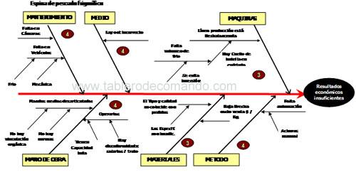 Mejorar la gestion: diagrama de Ishikawa